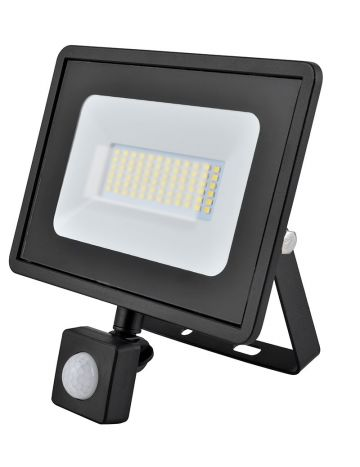 Eveready Black 30w LED PIR Floodlight - Cool White / 4000k