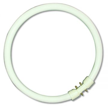 OSRAM BRANDED 55w T5 CIRCULAR FLUORESCENT TUBE IN COLOUR 840 / Cool White
