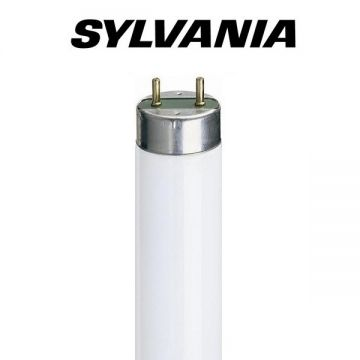 2FT F18w (18w) T8 Activa Tube Colour: 172 (SLI 0002218)