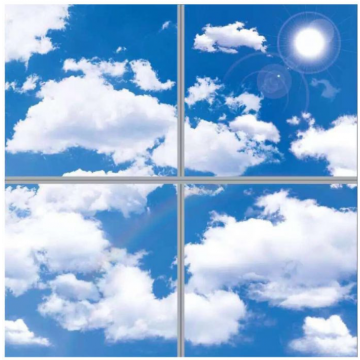 4 Pack LED 3D SKY CLOUD Panel 40w Recessed Ceiling SkyLight 600 x 600mm Daylight