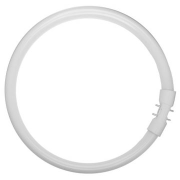 Osram 40w T5 Circular (299mm diameter) Fluorescent Tube - Warm White Colour